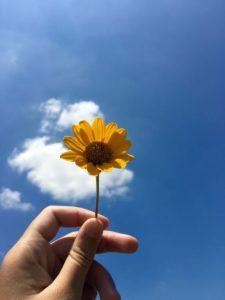 Псевдотоска и зачем поднимать себя за косичку