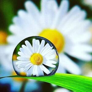 Красота, простота и тишина внутри